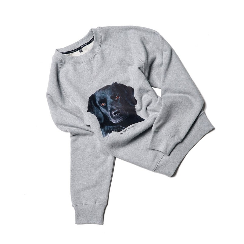 DOG sweatshirts(Stabyhoun, Gray)